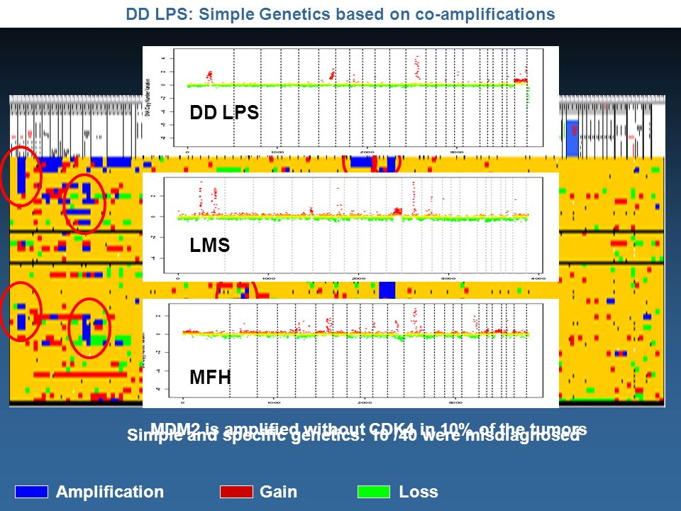 DD LPS: Simple Genetics based on co-amplifications