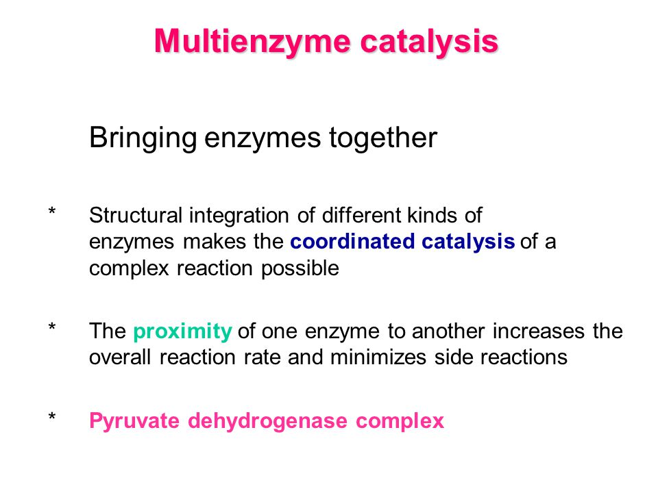 Multienzyme catalysis