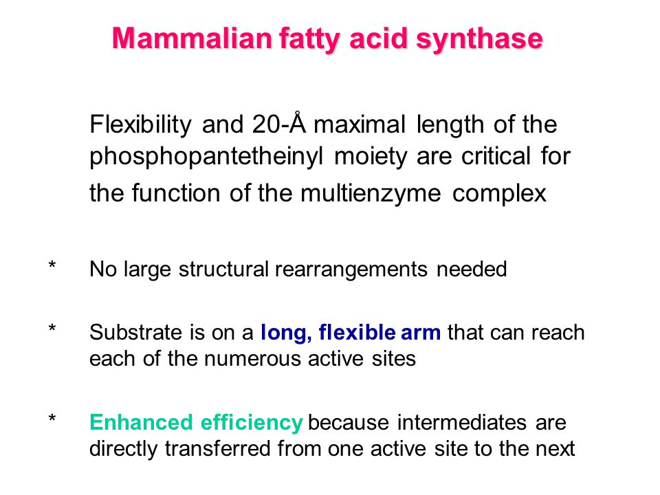 Mammalian fatty acid synthase