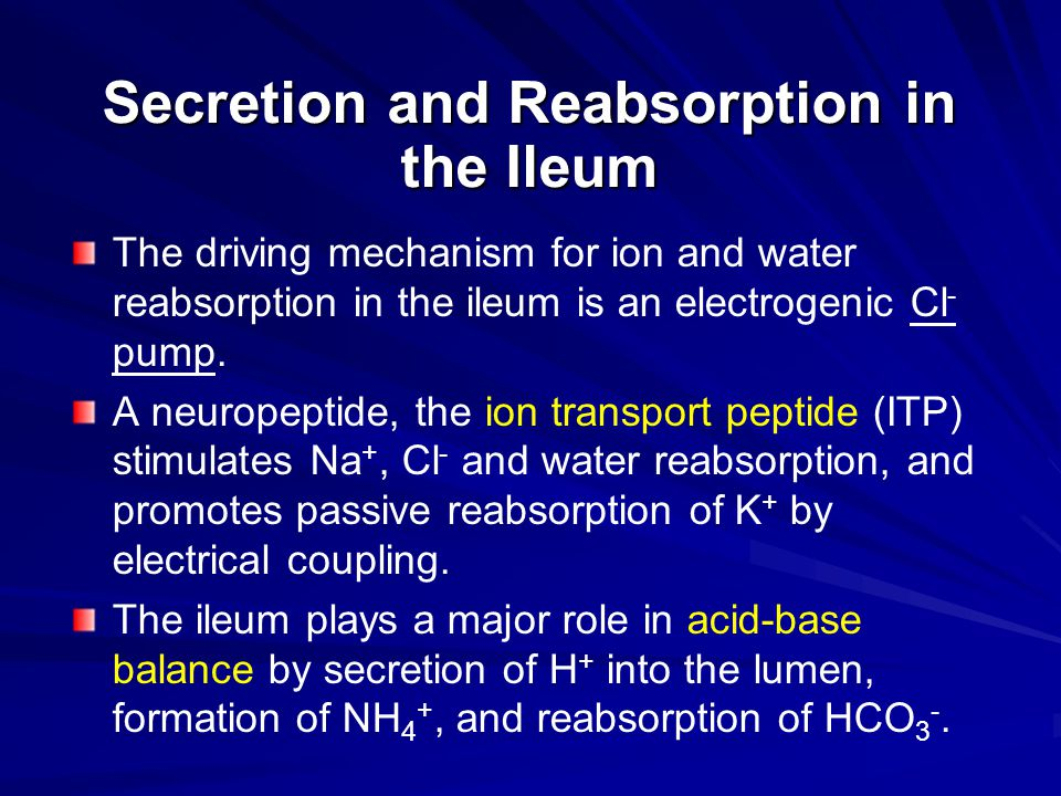 Secretion and Reabsorption in the Ileum