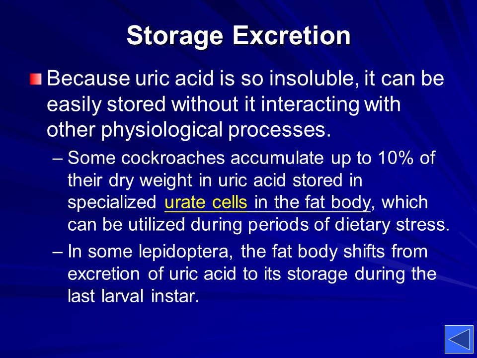 Storage Excretion Because uric acid is so insoluble, it can be easily stored without it interacting with other physiological processes.