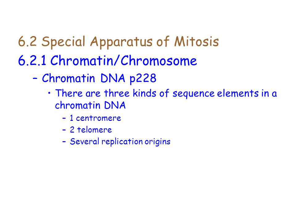 6.2 Special Apparatus of Mitosis 6.2.1 Chromatin/Chromosome
