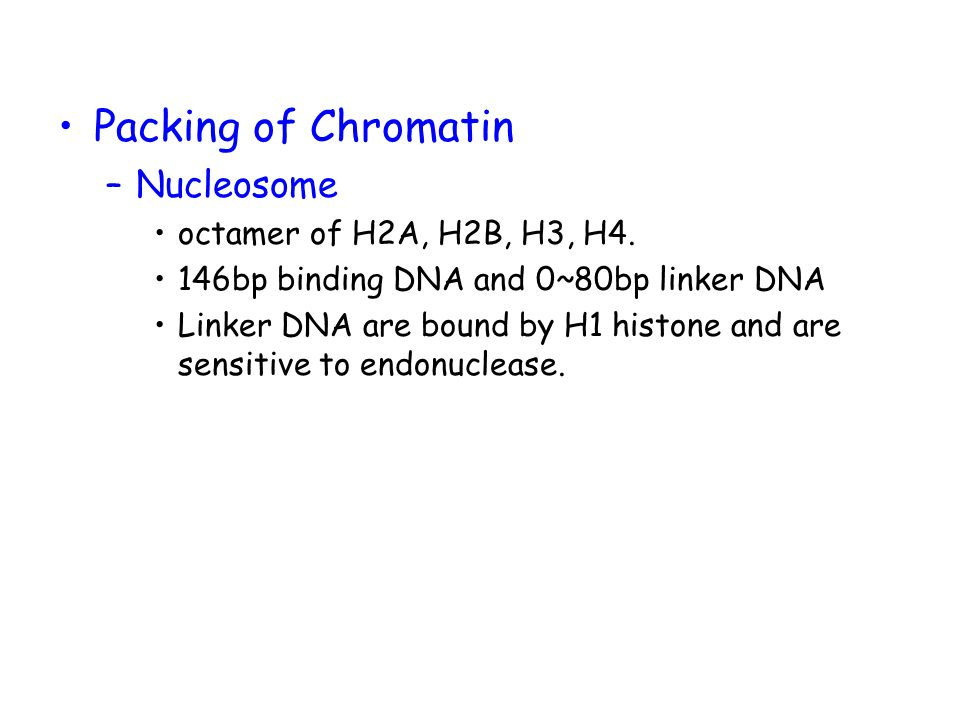 Packing of Chromatin Nucleosome octamer of H2A, H2B, H3, H4.
