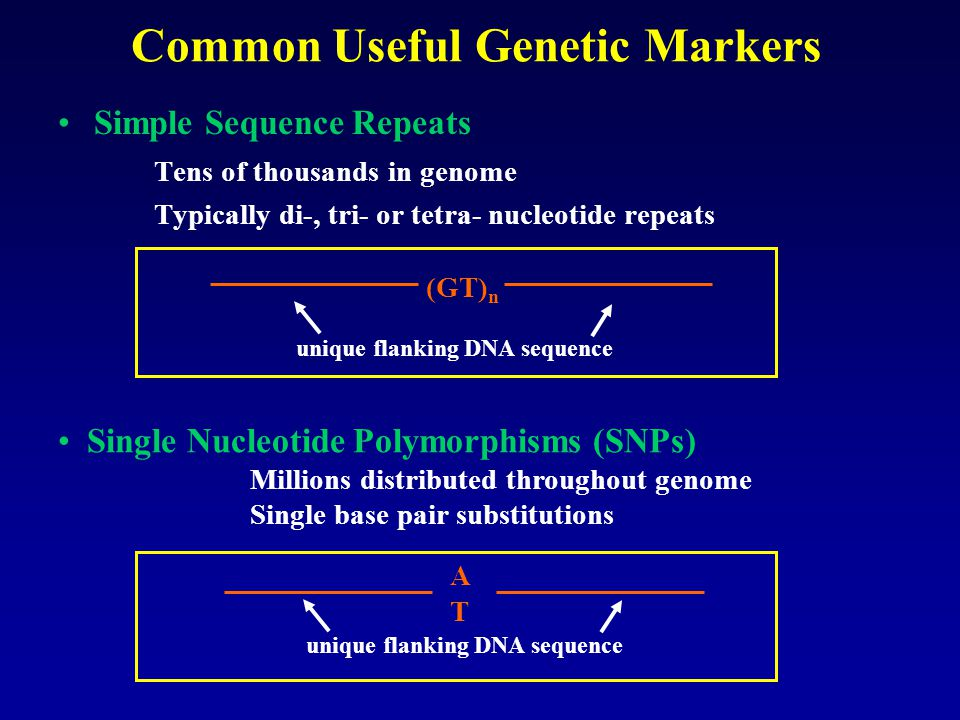 Common Useful Genetic Markers