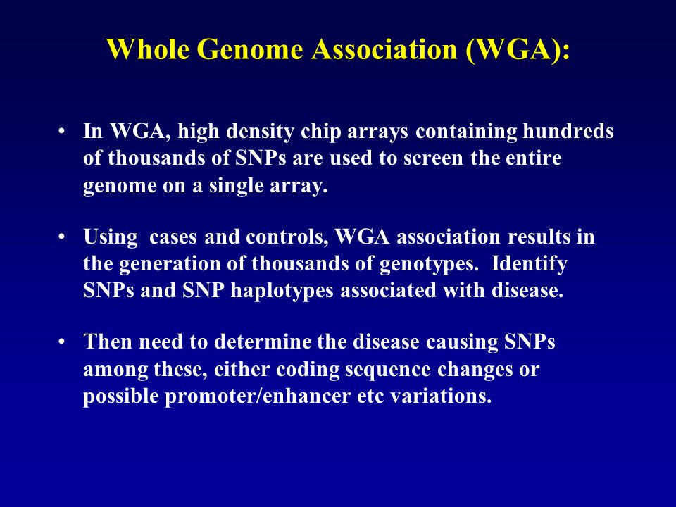 Whole Genome Association (WGA):
