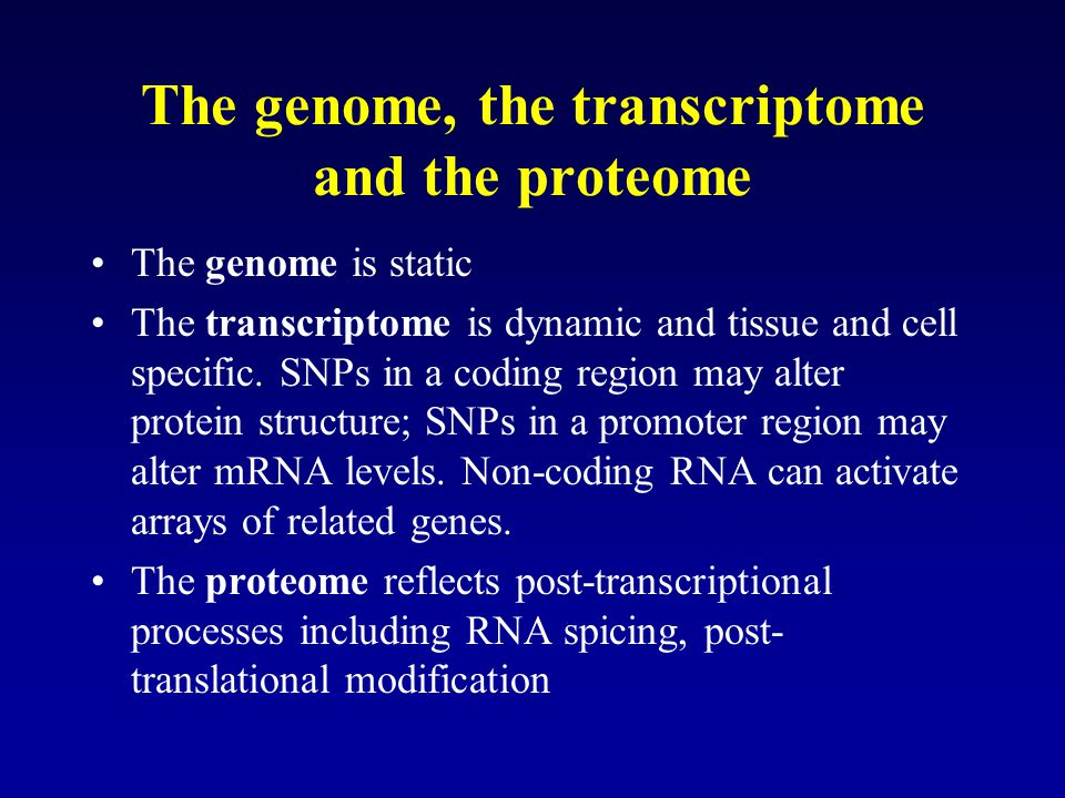 The genome, the transcriptome and the proteome