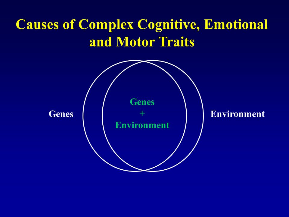 Causes of Complex Cognitive, Emotional