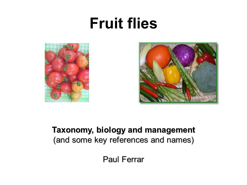 Taxonomy, biology and management