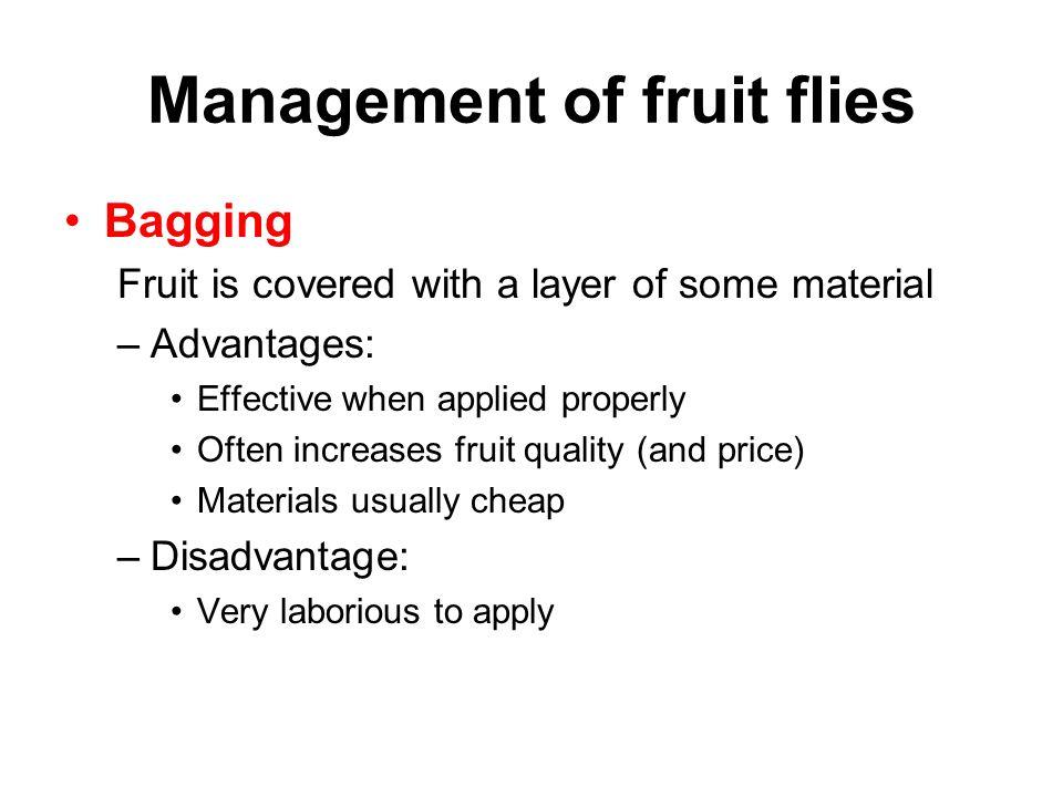 Management of fruit flies