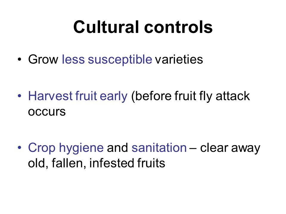 Cultural controls Grow less susceptible varieties