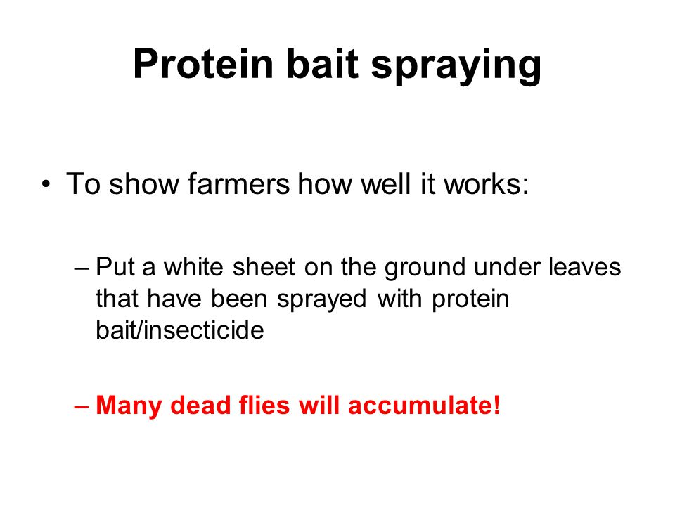 Protein bait spraying To show farmers how well it works: