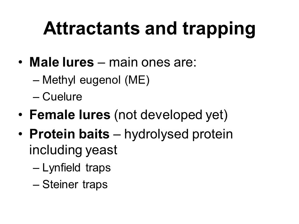 Attractants and trapping