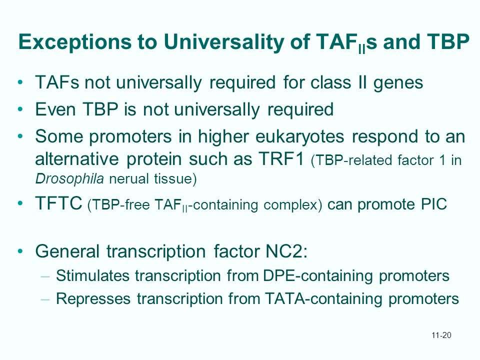 Exceptions to Universality of TAFIIs and TBP