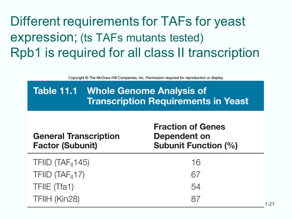 Different requirements for TAFs for yeast expression; (ts TAFs mutants tested) Rpb1 is required for all class II transcription