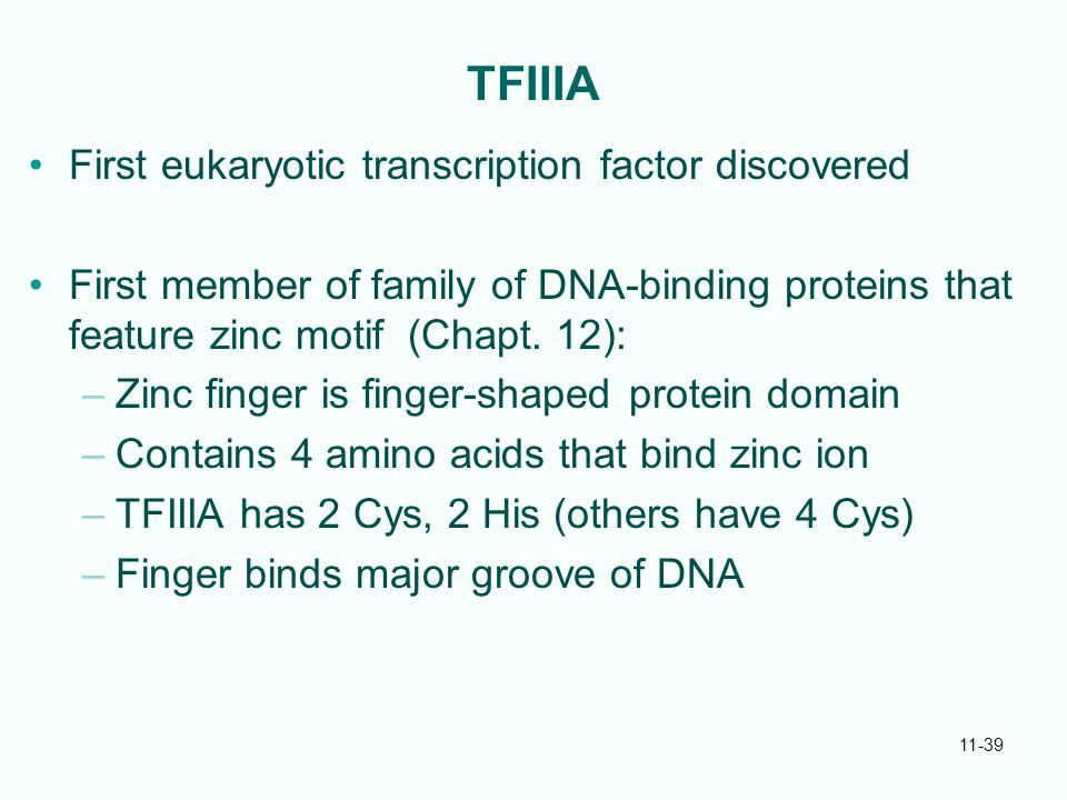 TFIIIA First eukaryotic transcription factor discovered