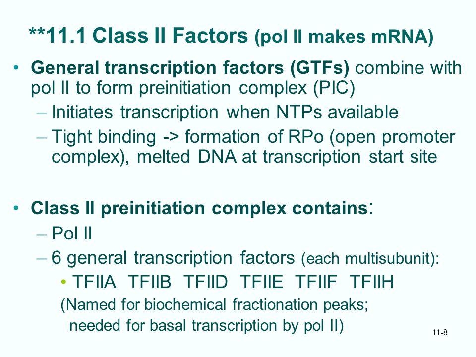 **11.1 Class II Factors (pol II makes mRNA)