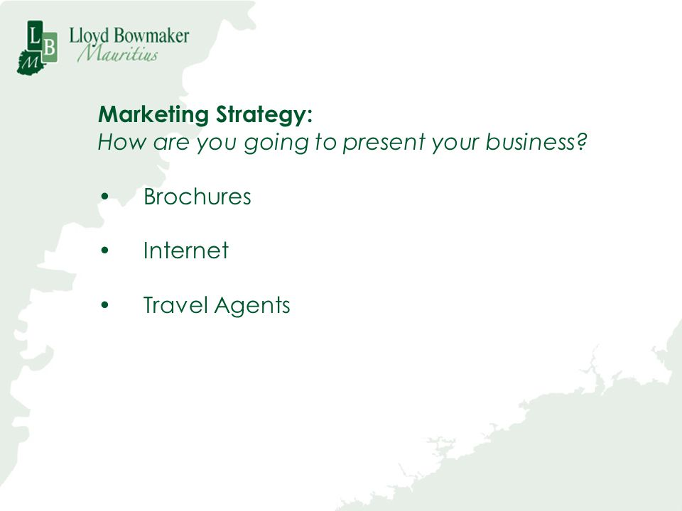 Marketing Strategy: How are you going to present your business Brochures Internet Travel Agents