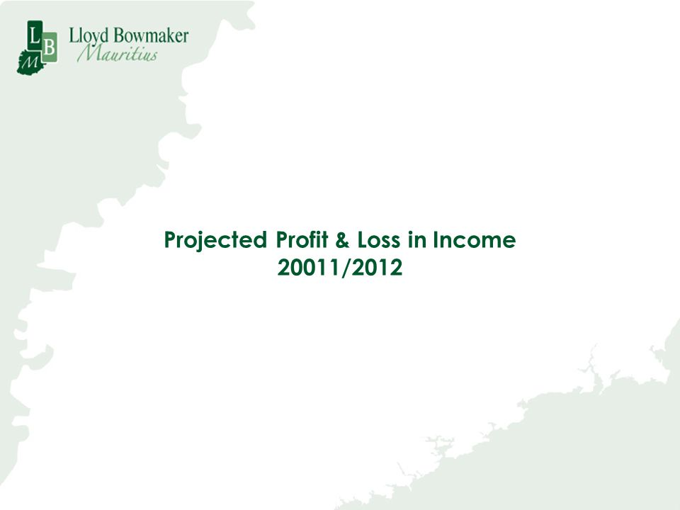 Projected Profit & Loss in Income