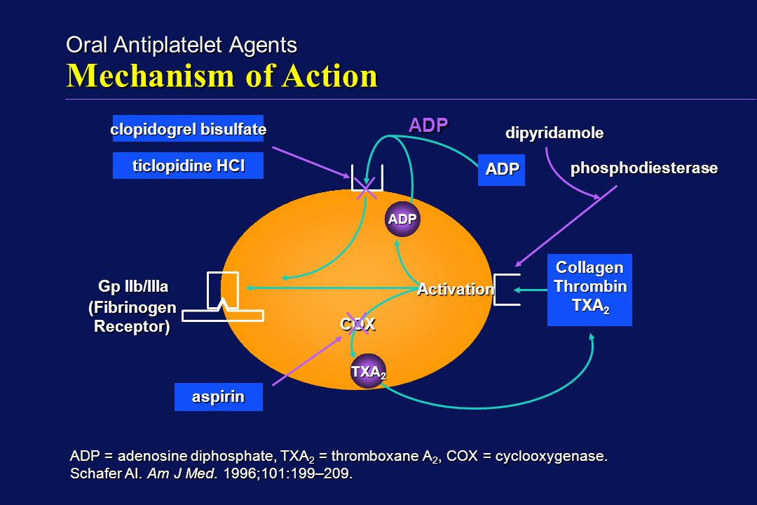 Mechanism of Action of Antithrombotic Drugs - ppt download