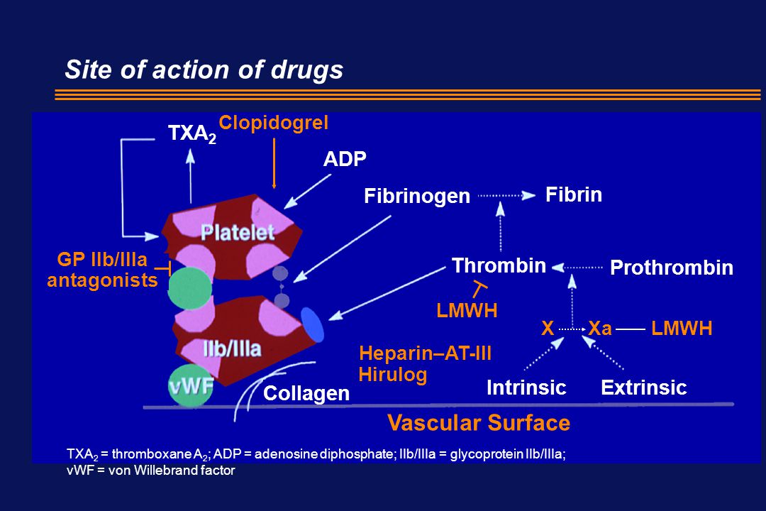 Site of action of drugs Vascular Surface TXA2 ADP Fibrinogen Fibrin