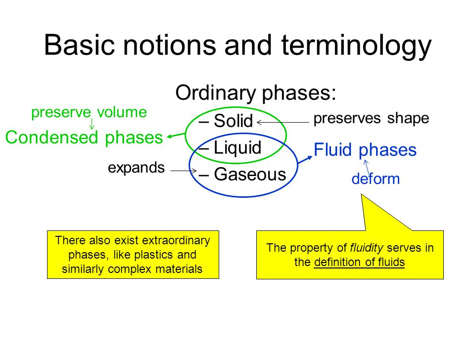 Basic notions and terminology