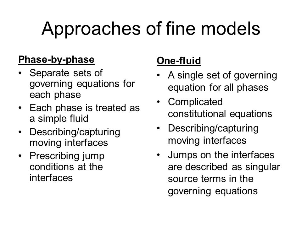 Approaches of fine models