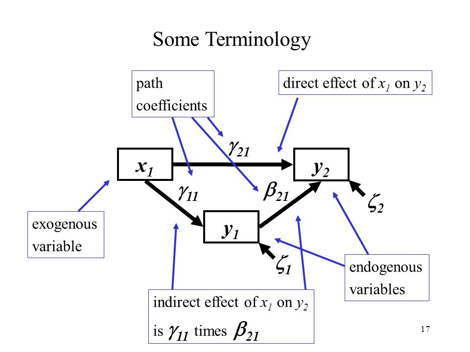 x1 y1 y2 1 2 Some Terminology 21 11 21 exogenous variable