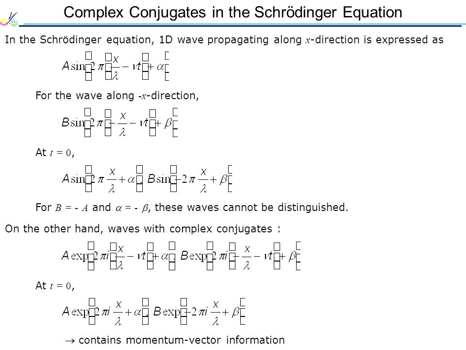 Complex Conjugates in the Schrödinger Equation