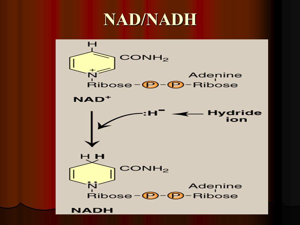 NAD/NADH