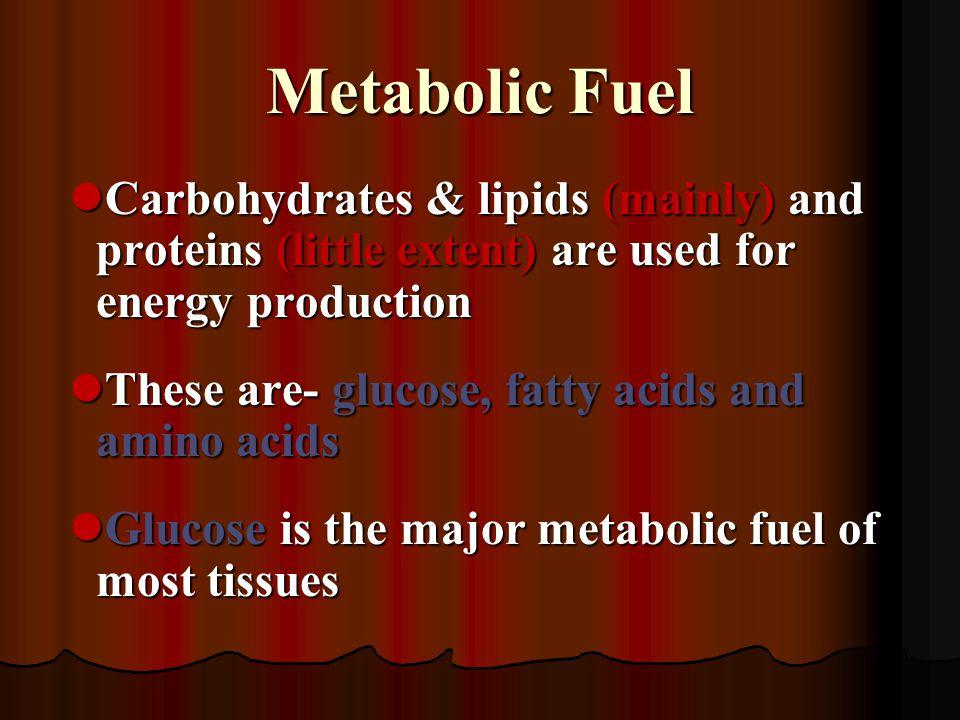 Metabolic Fuel Carbohydrates & lipids (mainly) and proteins (little extent) are used for energy production.