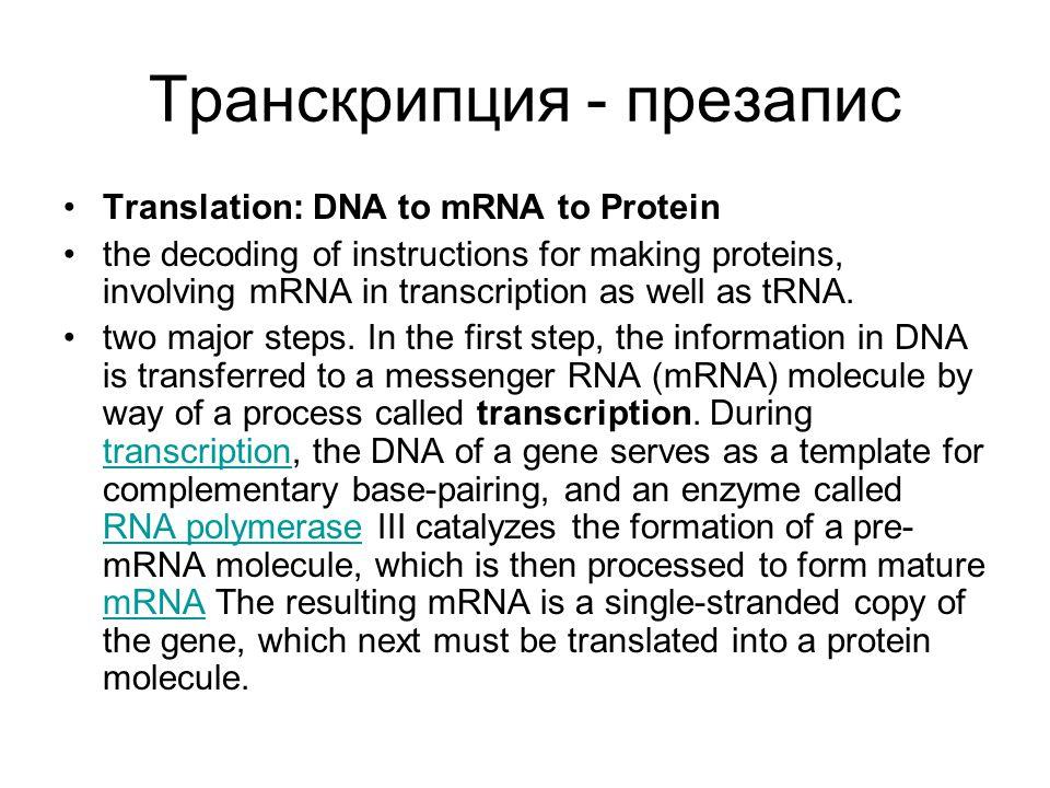 Транскрипция - презапис