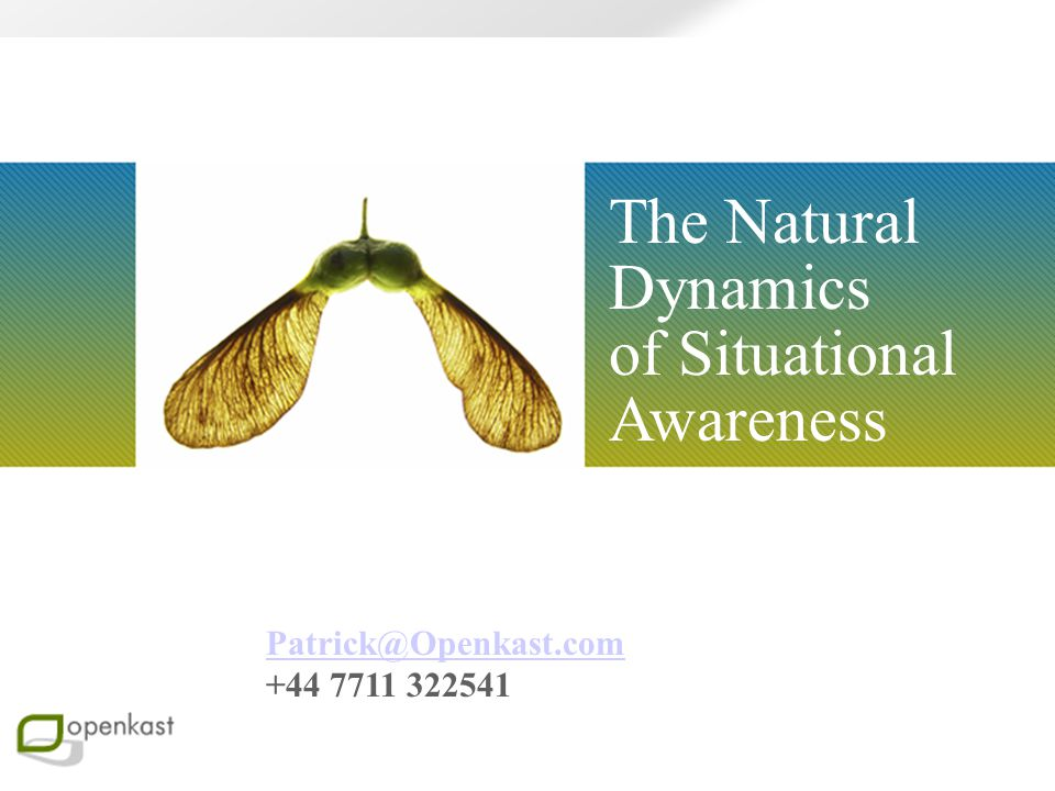The Natural Dynamics of Situational Awareness Patrick@Openkast.com