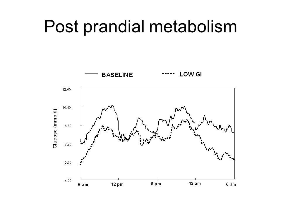 Post prandial metabolism