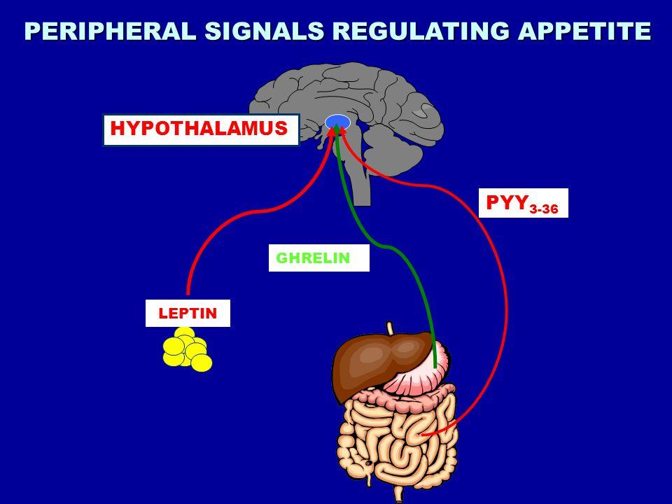 PERIPHERAL SIGNALS REGULATING APPETITE