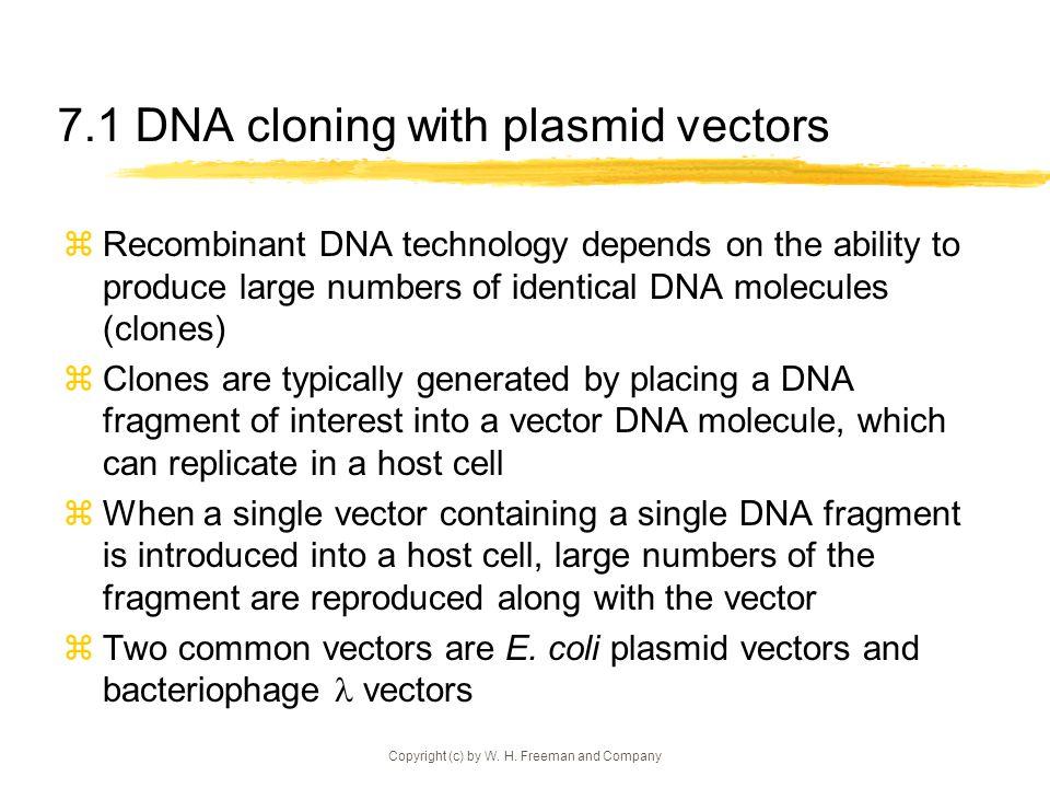 7.1 DNA cloning with plasmid vectors