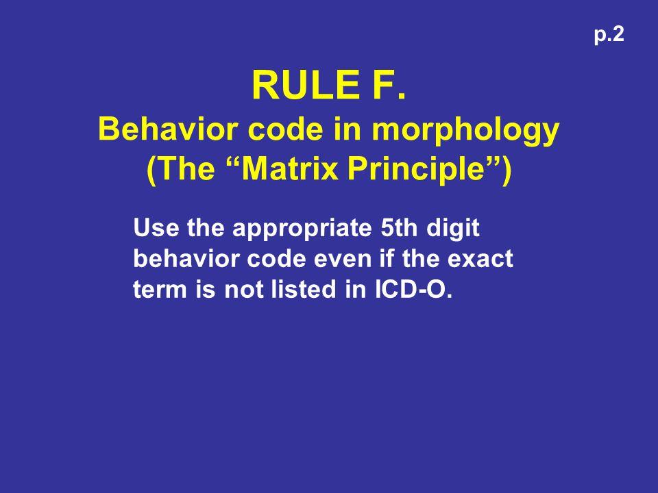 RULE F. Behavior code in morphology (The Matrix Principle )