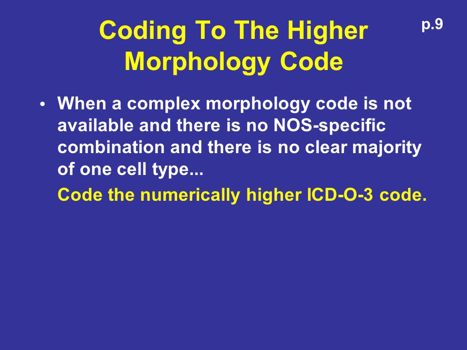 Coding To The Higher Morphology Code