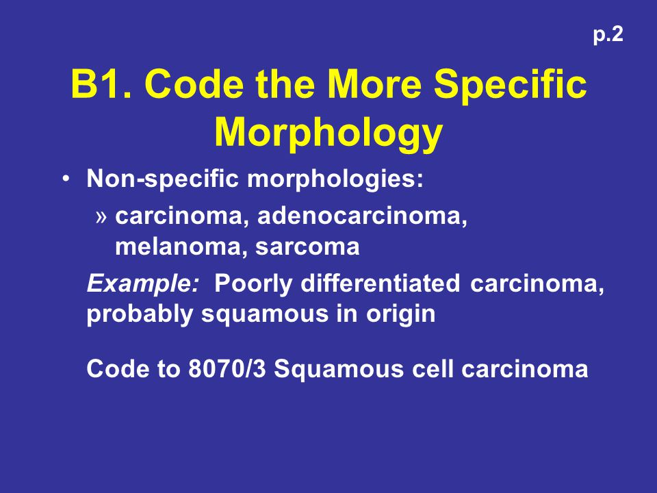 B1. Code the More Specific Morphology