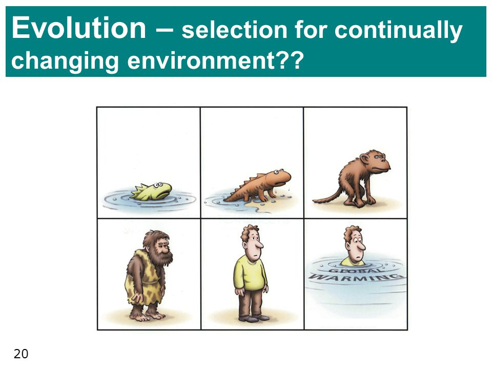 Evolution – selection for continually changing environment