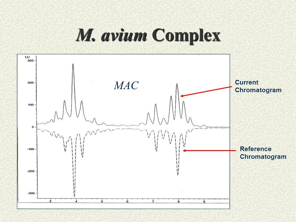 M. avium Complex MAC Current Chromatogram Reference Chromatogram
