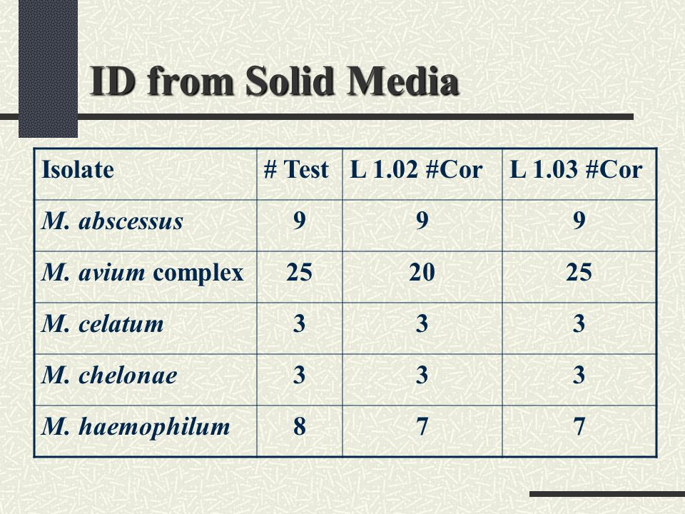 ID from Solid Media Isolate # Test L 1.02 #Cor L 1.03 #Cor