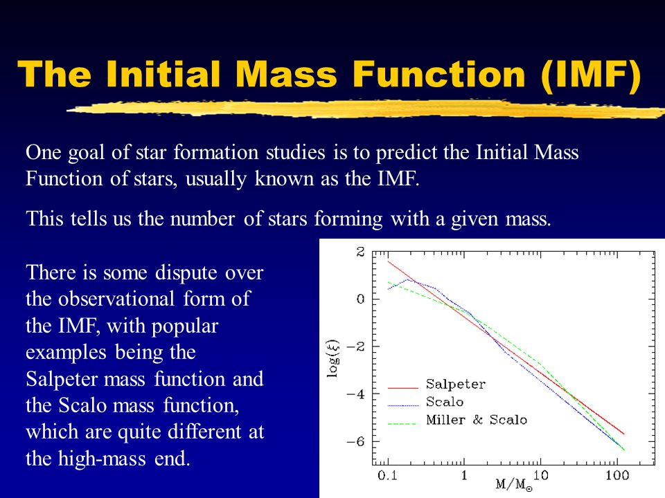 The Initial Mass Function (IMF)