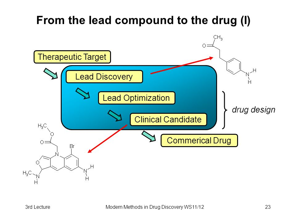 From the lead compound to the drug (I)