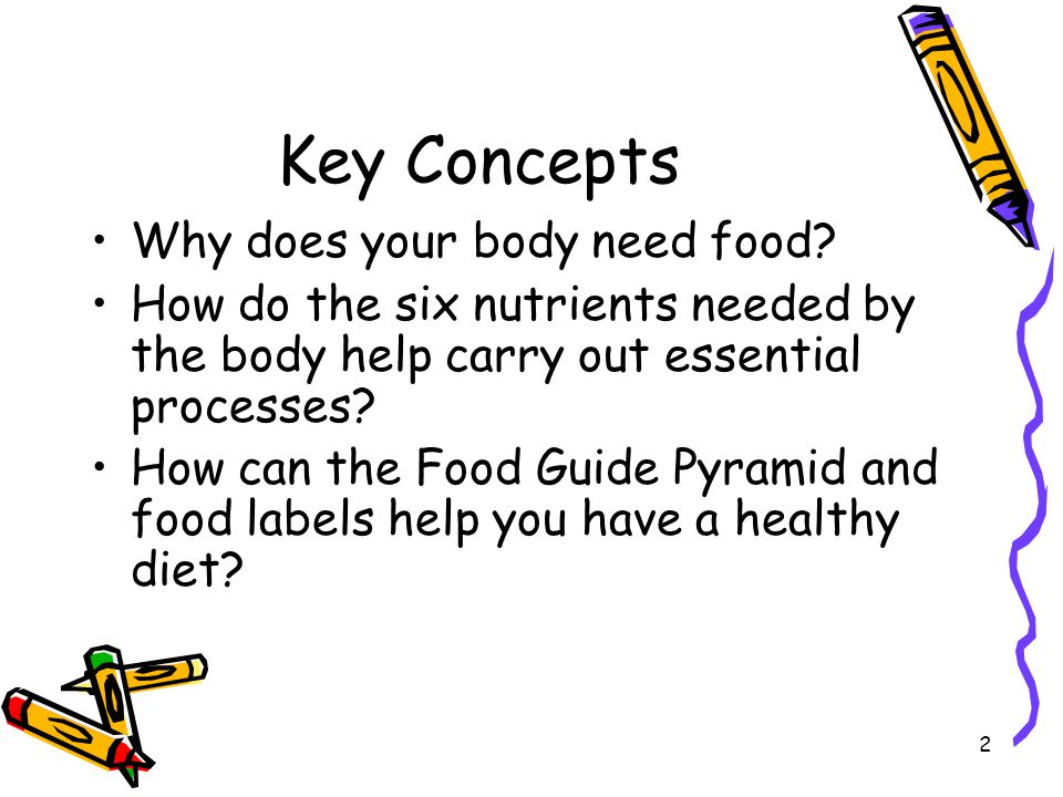 Key Concepts Why does your body need food