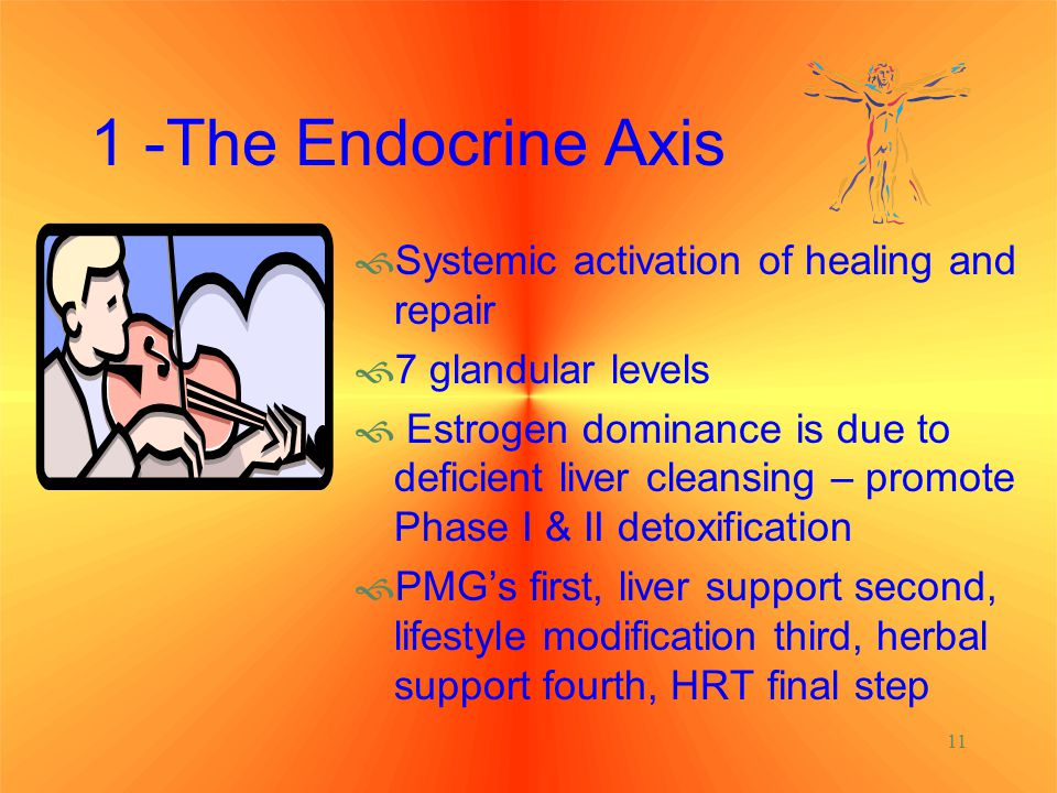 1 -The Endocrine Axis Systemic activation of healing and repair