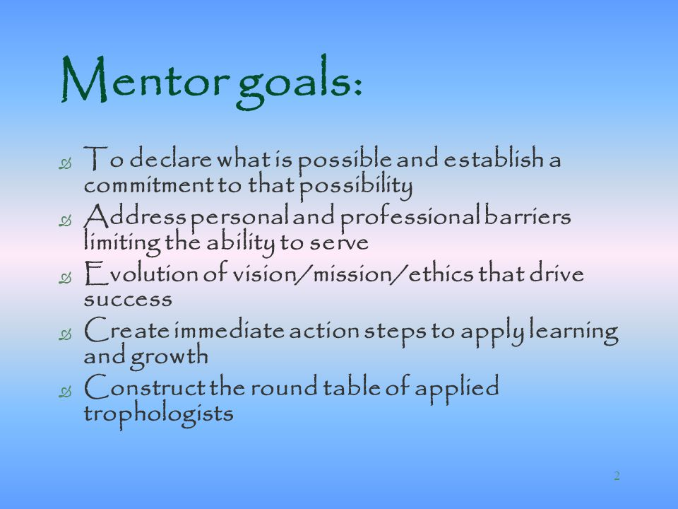 role of a mentor in barriers to learning Learning mentors perform a wide-ranging role duties vary depending on the barriers to learning/employment faced by the participant, the level of expertise required and complexity of the work expected however, the key role of the mentor is to support the participant in overcoming barriers to learning and barriers to work in.