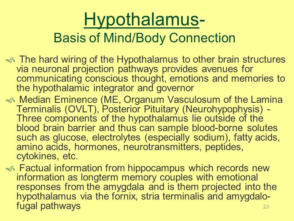 Hypothalamus- Basis of Mind/Body Connection