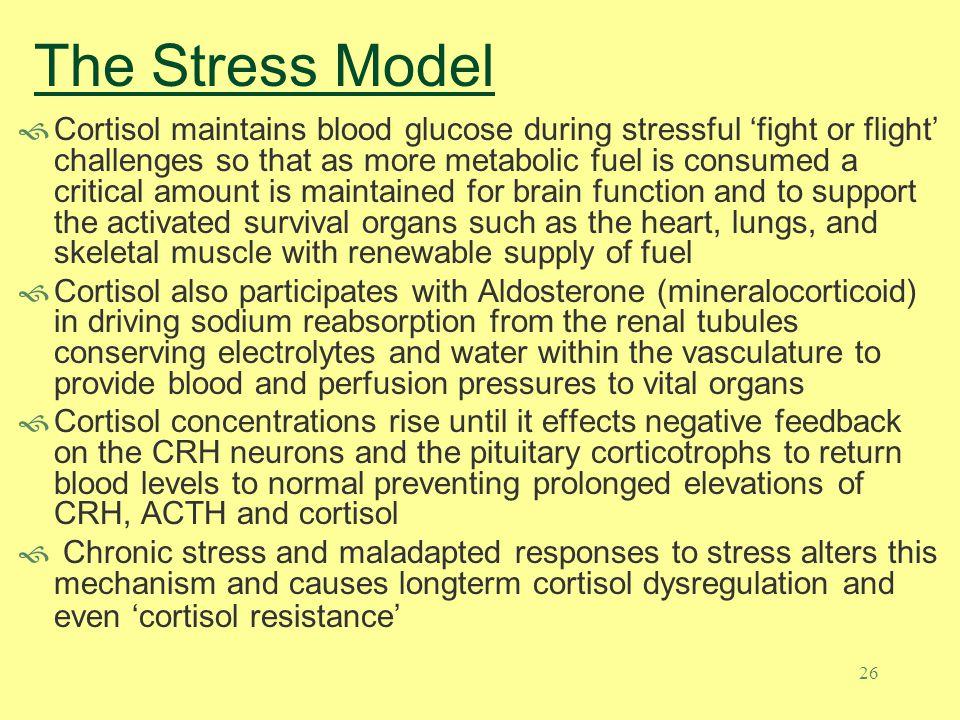The Stress Model