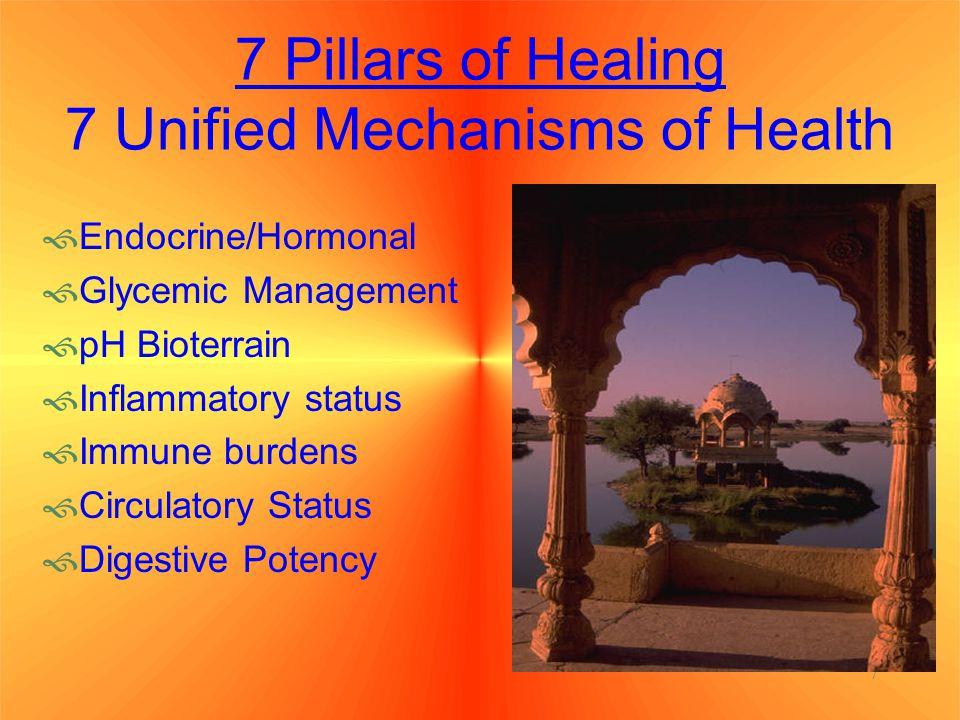 7 Pillars of Healing 7 Unified Mechanisms of Health