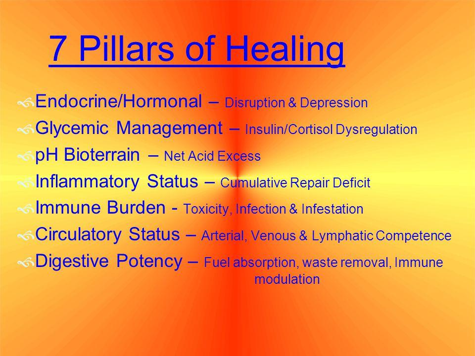 7 Pillars of Healing Endocrine/Hormonal – Disruption & Depression